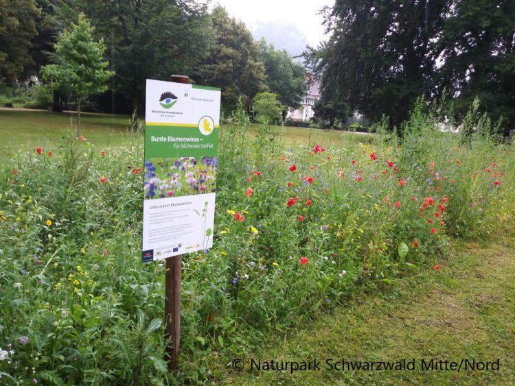 Projekt Blühende Naturparke